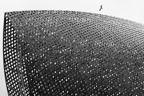CONTEMPORANEA ESTERNI: Barcellona, pesce d'oro, arch. Frank Gehry