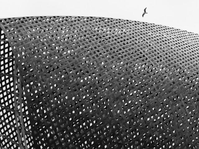 CONTEMPORANEA ESTERNI: BCN, pesce d'oro, Frank Gehry